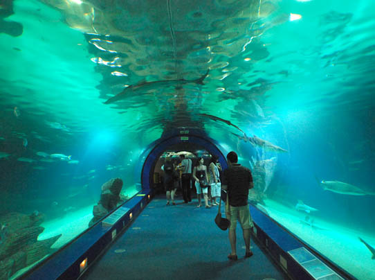 Valparaiso exclusive luxury villa costa blanca spain for Aquarium valencia bar